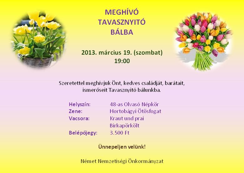 meghiv2013.jpg